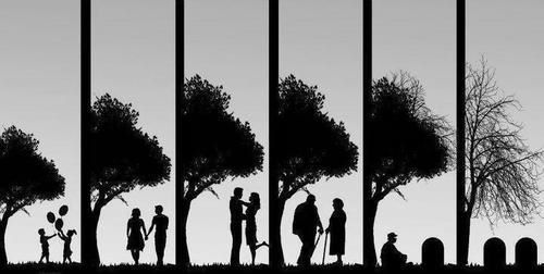 resumen-de-la-vida-de-una-pareja