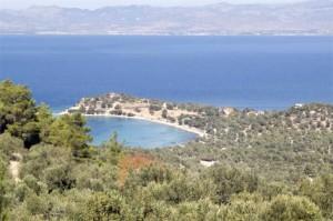 23.11-ancient-greek-city