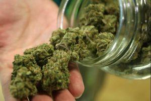 marihuana-consumo