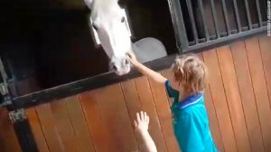 161015152512-boy-gets-pony-thumb-1-exlarge-169